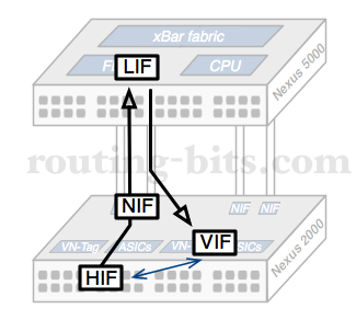 What is a Fabric Extender – Routing-Bits